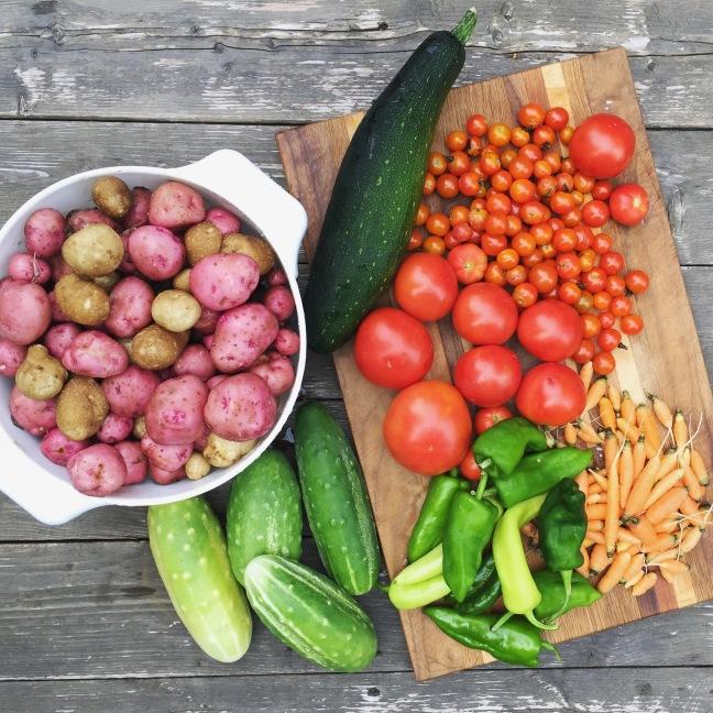 vegan garden harvest