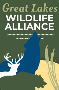 GreatLakesWildlifeAlliance-4C-logo-sm
